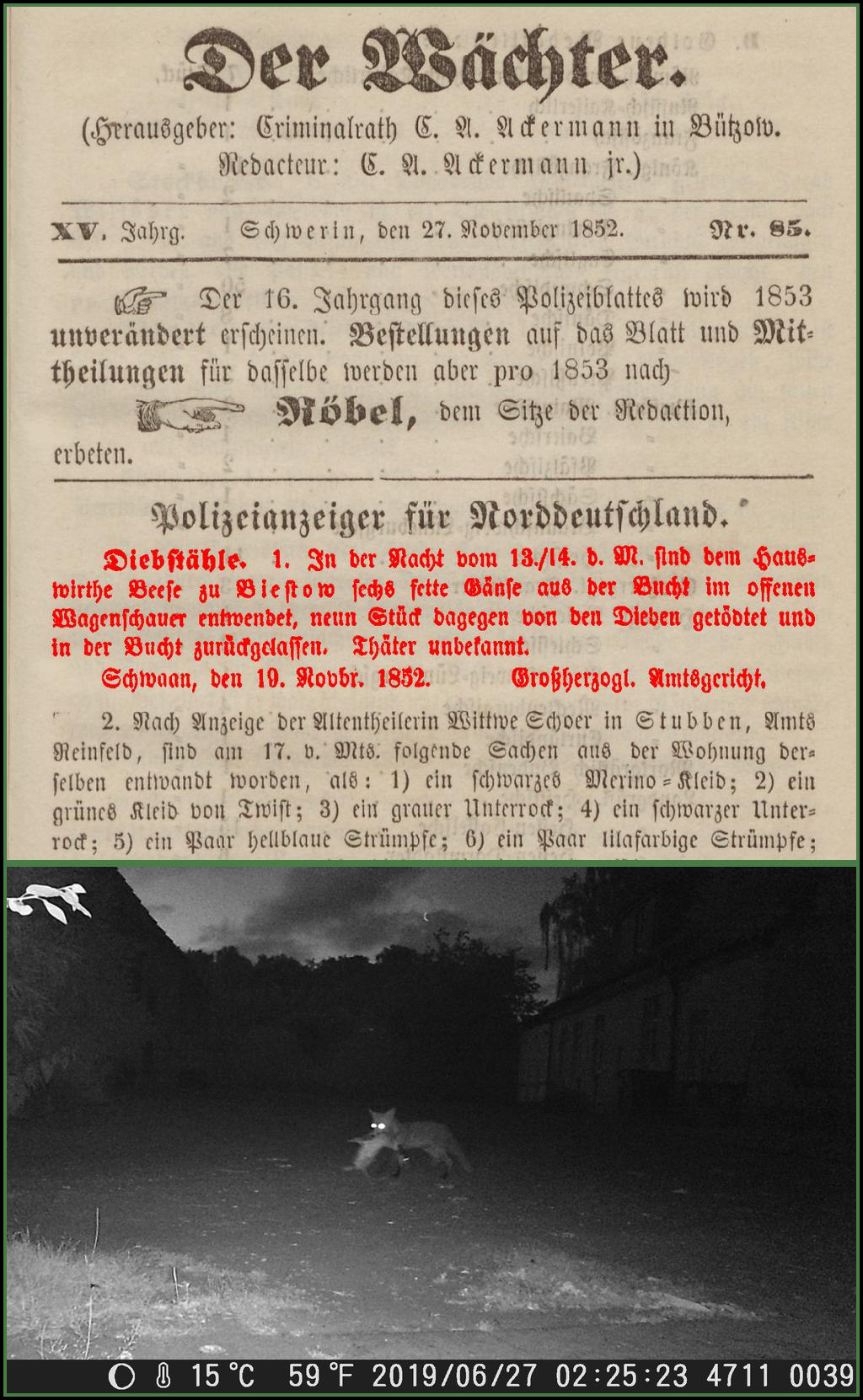 1852_Der_Wächter_klein