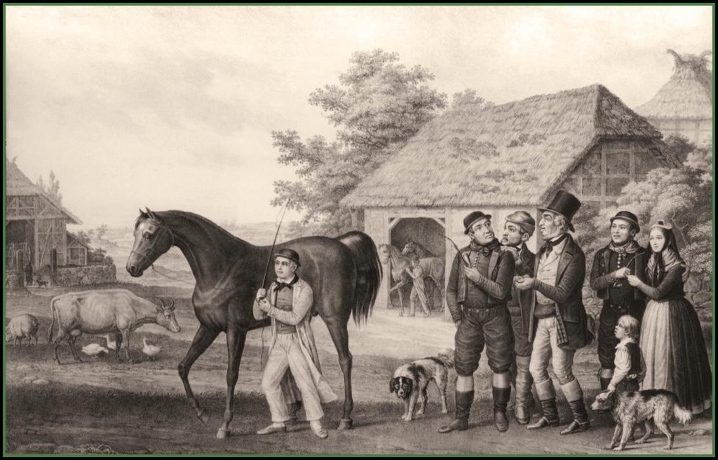 Pferdehandel auf dem Lande